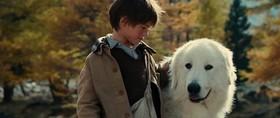 Belle e Sébastien nel film