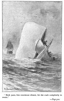 Moby Dick in un'edizione del 1892