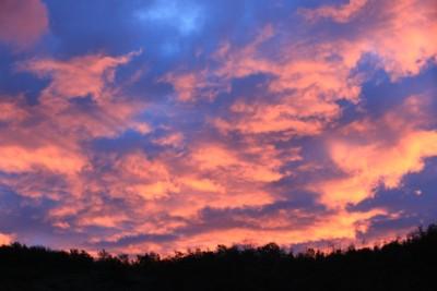 alba d'autunno