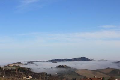 Isole nella nebbia